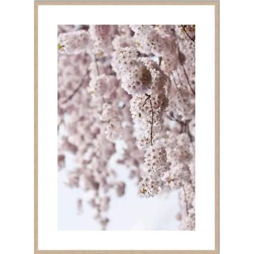 Springtime Framed Print [Frame Colour: Natural] [Size: Small - 630x830mm]